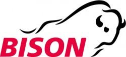 Bison IT Services AG